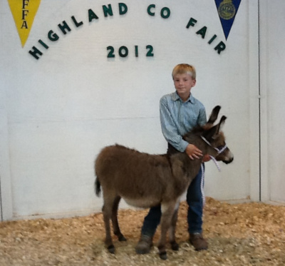 Highland County Fair, Highland County, Virginia, fair, amusements, tourism, travel, agriculture, family, vacation, fun